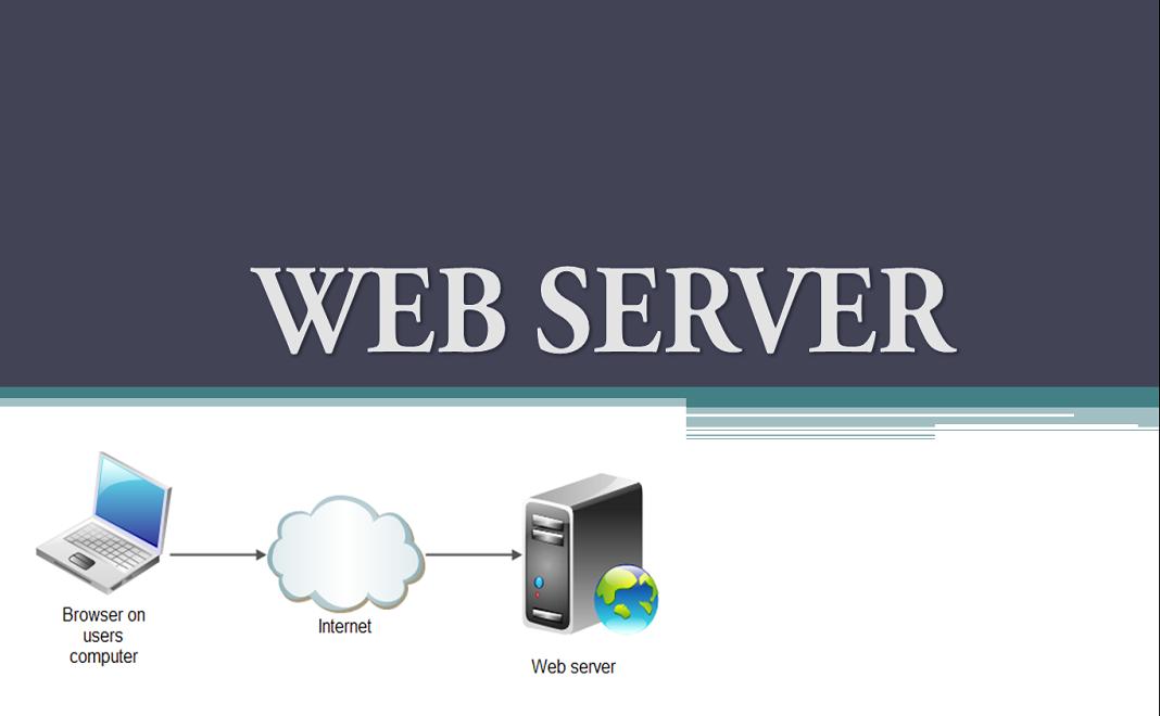 Fungsi Web Server Wordpress Dan Pengertiannya