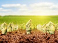 Apakah Tanah Menjadi Investasi Impian Bagi Setiap Orang